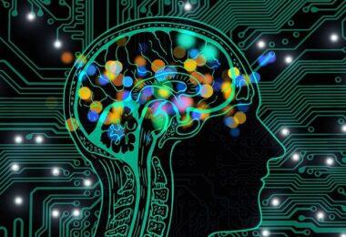 Gehirn, Künstliche Intelligenz, KI, digitales Denken