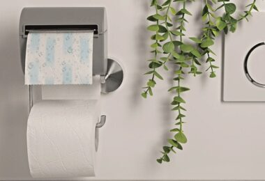 Bideo, feuchtes Toilettenpapier, Die Höhle der Löwen, DHDL