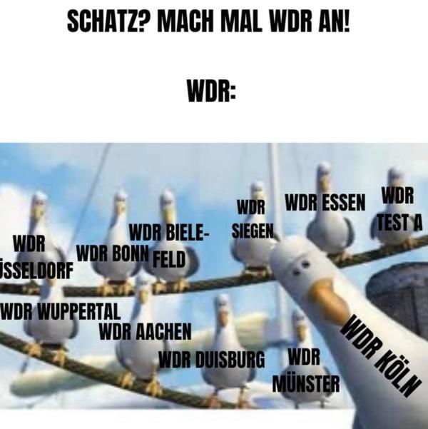 Der WDR und seine unzähligen Kinder