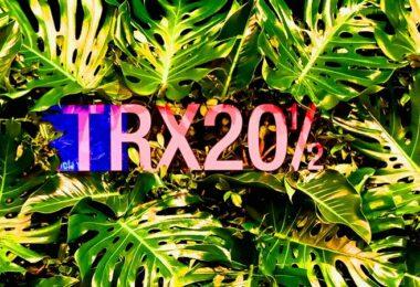 TRX20½, Transactions 20½, virtuelle Konferenzen, digitale Events, Online Events planen