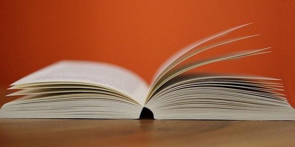 Buch, Lesen, Lektüre, Ausbildung