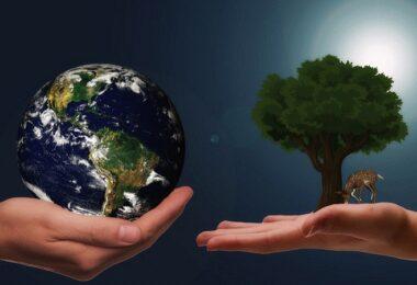 Klimaschutz, Umwelt, Erde, Planet, Naturschutz, Nachhaltigkeit in Unternehmen