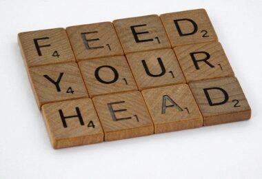 Feed your Head, Gedächtnistraining, Vergessenskurve Ebbinghaus