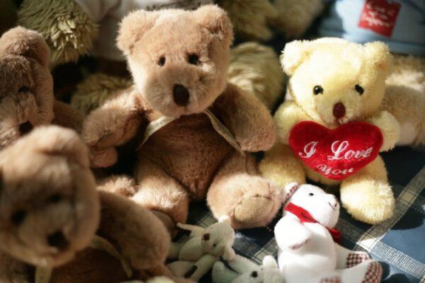Geschenk, Teddybär