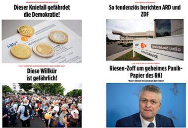 Bild, Populismus, Aktivismus, Querdenker, Bild-Zeitung