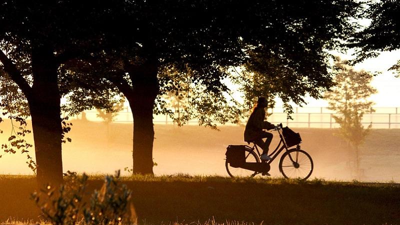 Fahrrad, Fahrradfahrer, Fahrradfahren, Jobrad, Alternativen zur Gehaltserhöhung