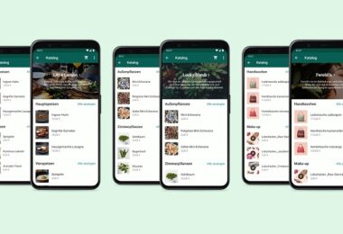WhatsApp, Messenger, Unternehmen, WhatsApp Business