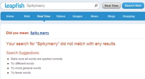 Spikymarry Websuche